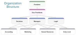 158 - organization-structure