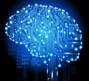 238-mind-circuits